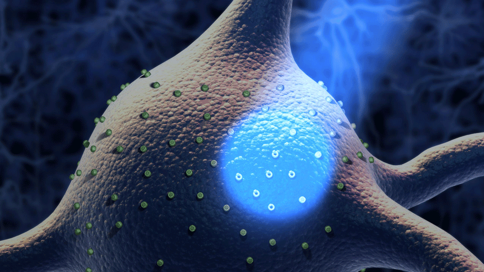 Resultado de imagen para Optogenetics