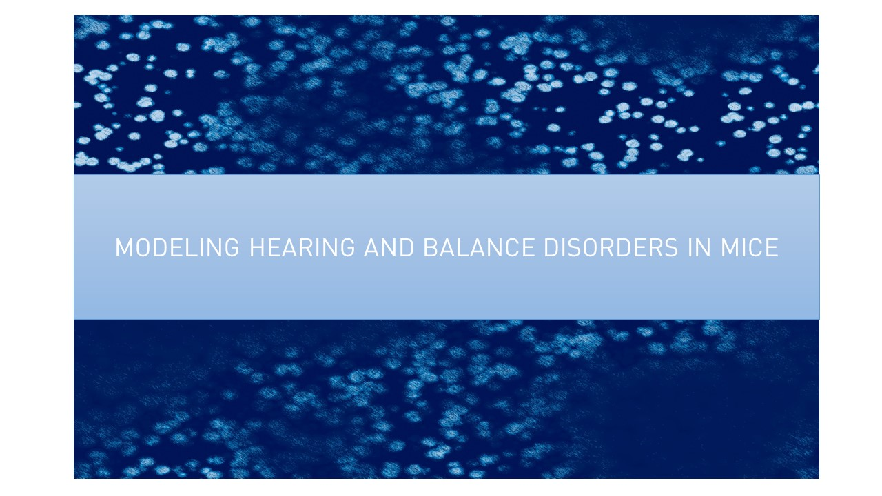 Sep 23 Modeling Hearing and Balance Disorders in Mice: The