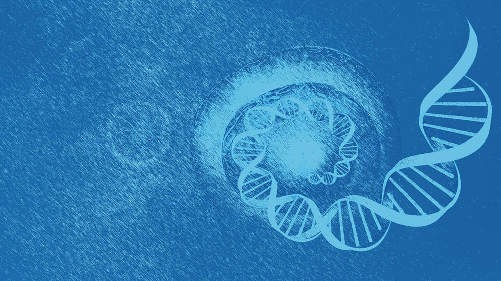 What is single cell genomics?