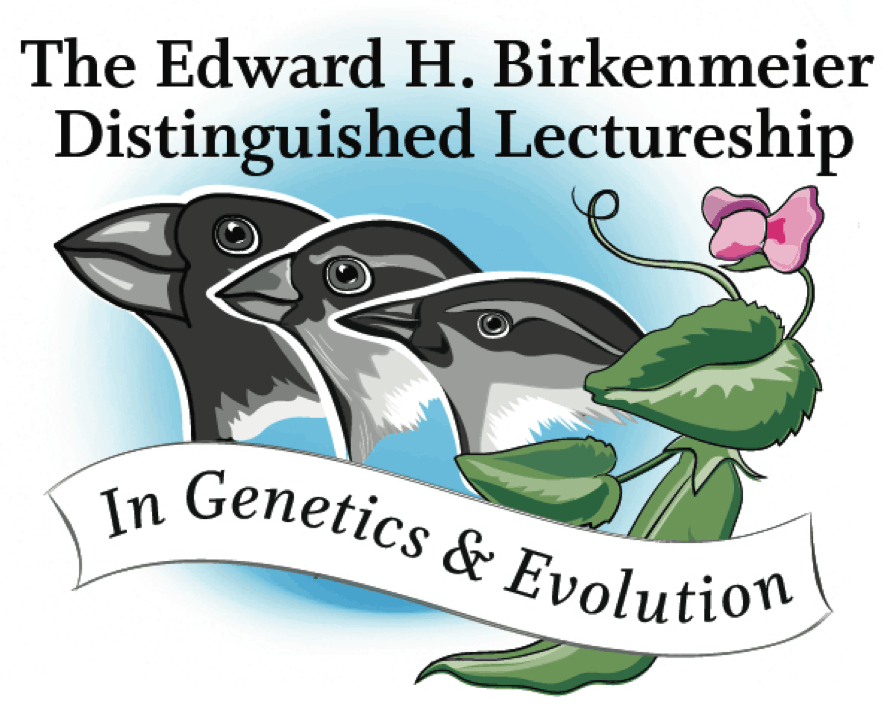 Birkenmeirer Lecture Series