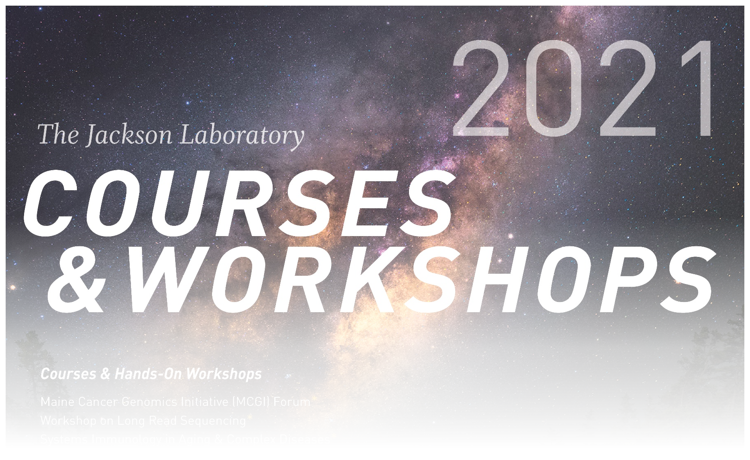 2021 Courses & Workshops Poster