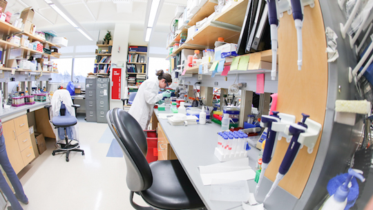 wide angle image of a scientist at the lab bench