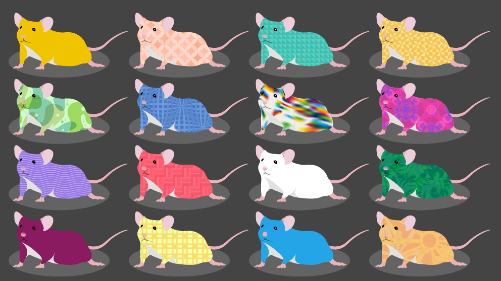 Diversity Outbred Mice