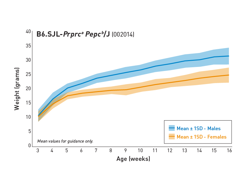 Body Weight Information - JAX<sup>®</sup> Mice Strain B6.SJL-<em>Ptprc<sup>a</sup> Pepc<sup>b</sup></em>/BoyJ (002014)