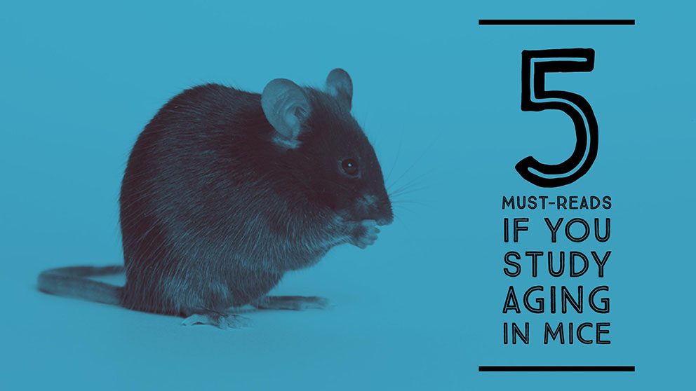 November five must reads if you study aging in mice