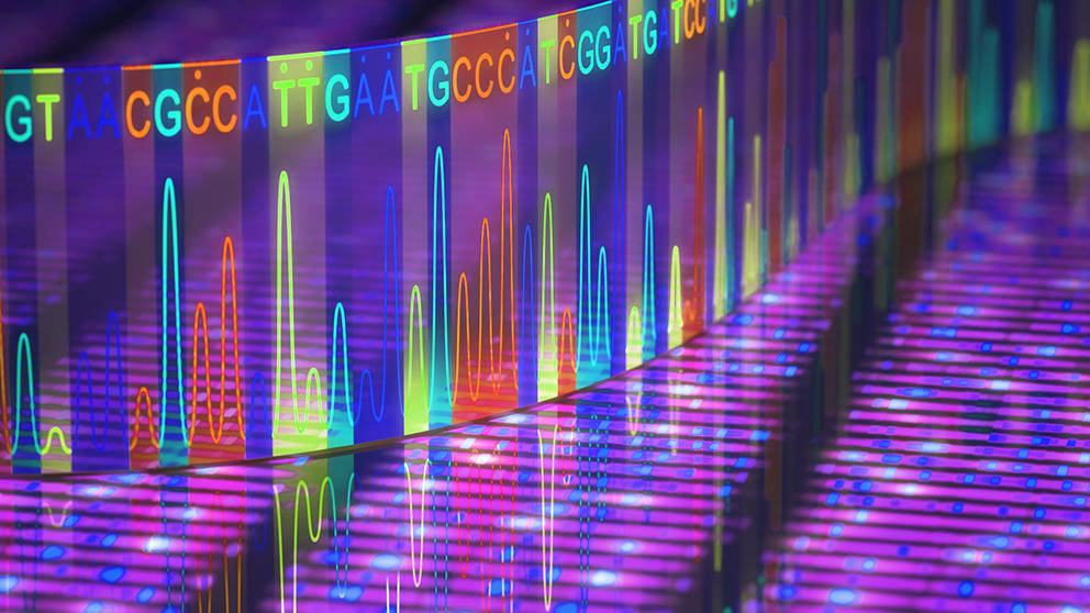 Bridging the gaps in DNA sequencing