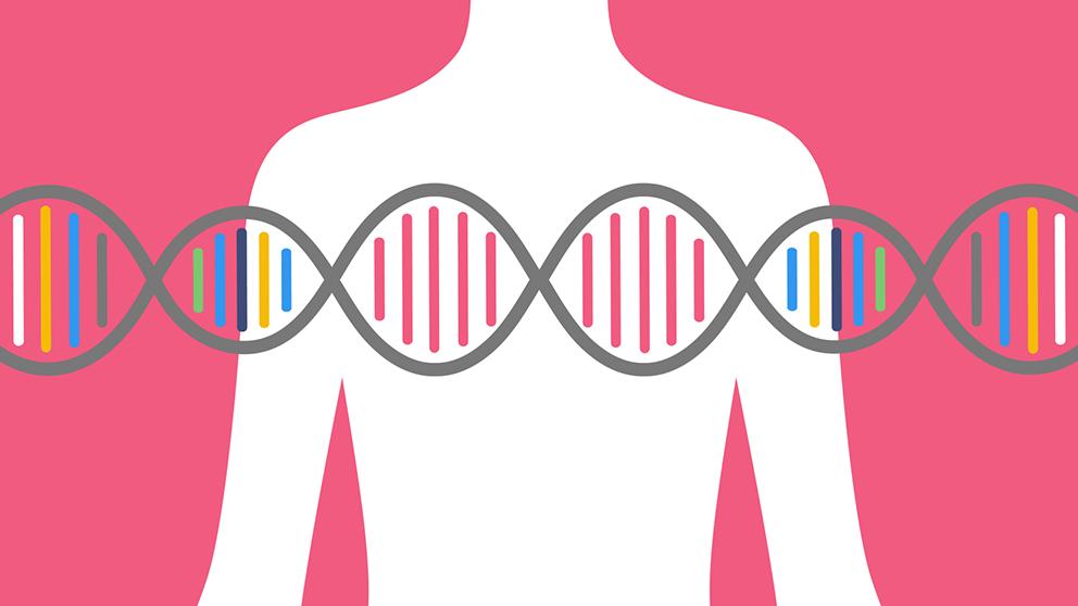 Artistic representation of a human torso and dna helix.