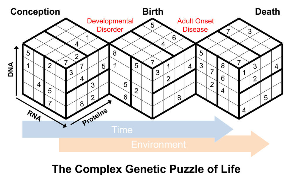 Complex genetic puzzle of life