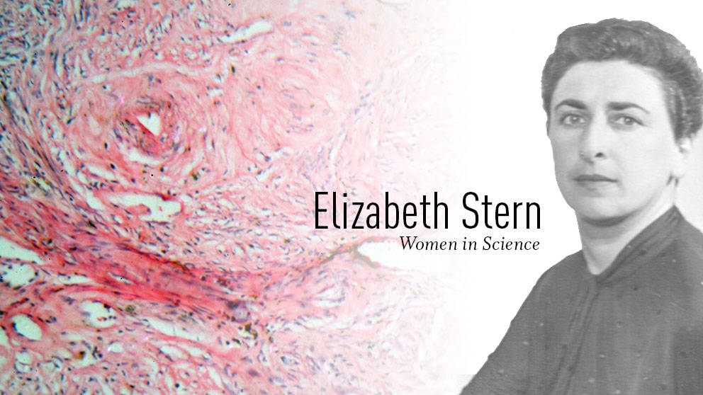 Elizabeth Stern, cervical cancer women's health pioneer