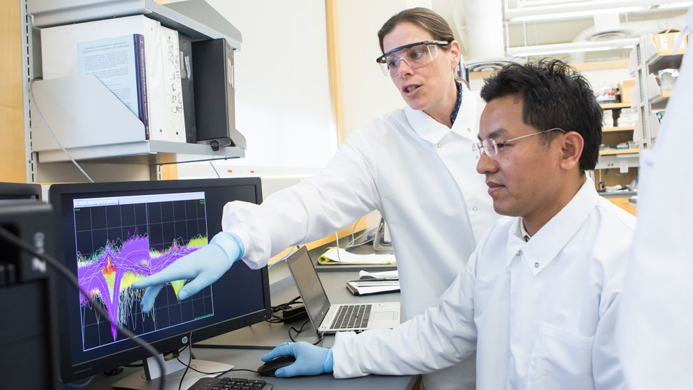 Assistant Professor Catherine Kaczorowski, Ph.D., is focused on understanding how the brain changes as we age so that cognitive decline may not be an inevitable part of growing older.