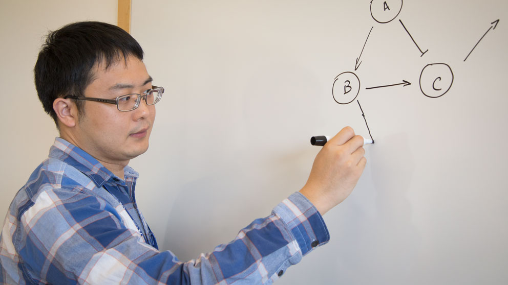 Untangling gene regulatory mechanisms of cellular decision-making: @NIGMS makes 5Y, $2.8M grant to @JacksonLab's Mingyang Lu @lvmy to build RACIPE algorithm
