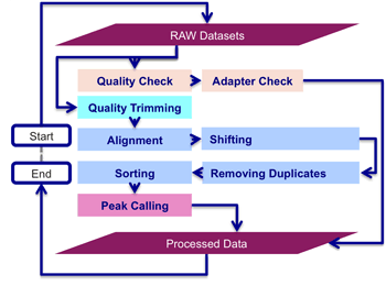 I-ATAC Processing Pipeline Diagram