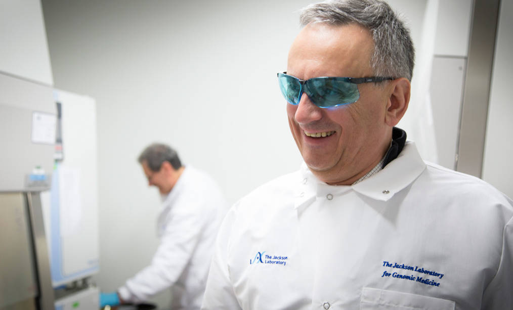 Jacques Banchereau, Director, Immunological Sciences working in his lab