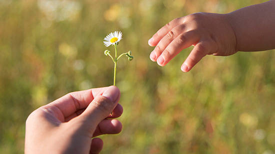 Make a Gift, pic of passing a flower from one hand to the other