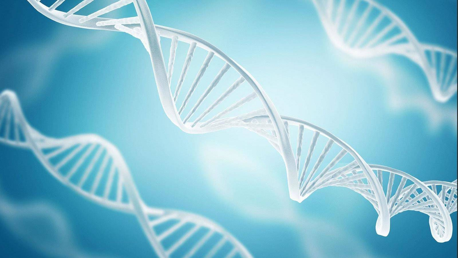 crispr cas9 history and engineering Derived from a microbial defense system, cas9 can be guided to specific locations within complex genomes by a short rna the development, applications, and future directions of the crispr-cas9 system for genome engineering are discussed here.